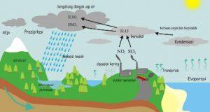 Gas Yang Menyebabkan Hujan Asam
